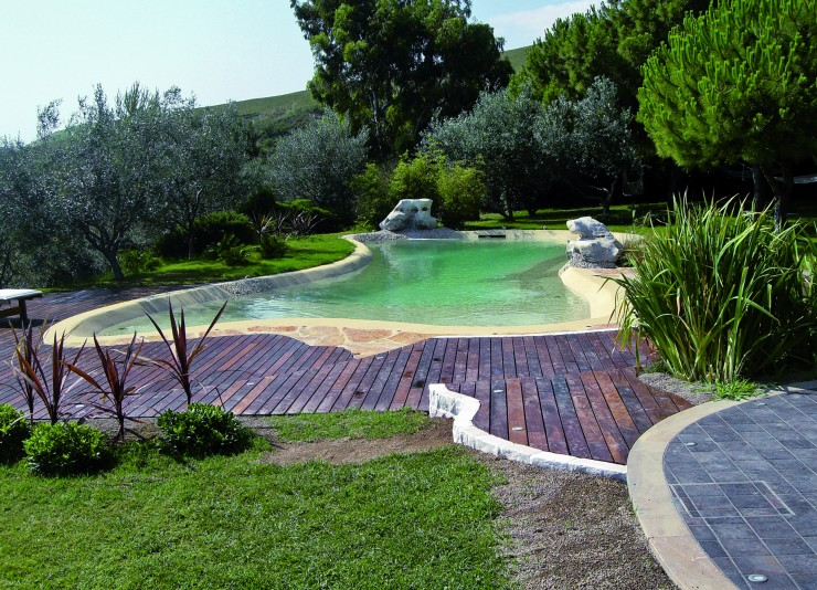 Biodesign pool in garden