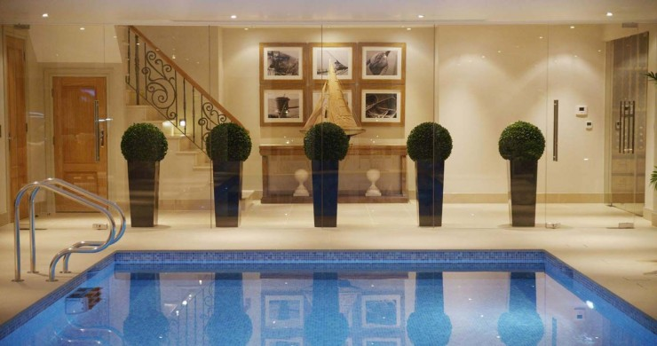 Indoor pool with plants